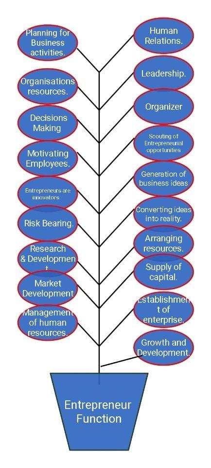 Entrepreneurship functions, Functions Of Entrepreneur