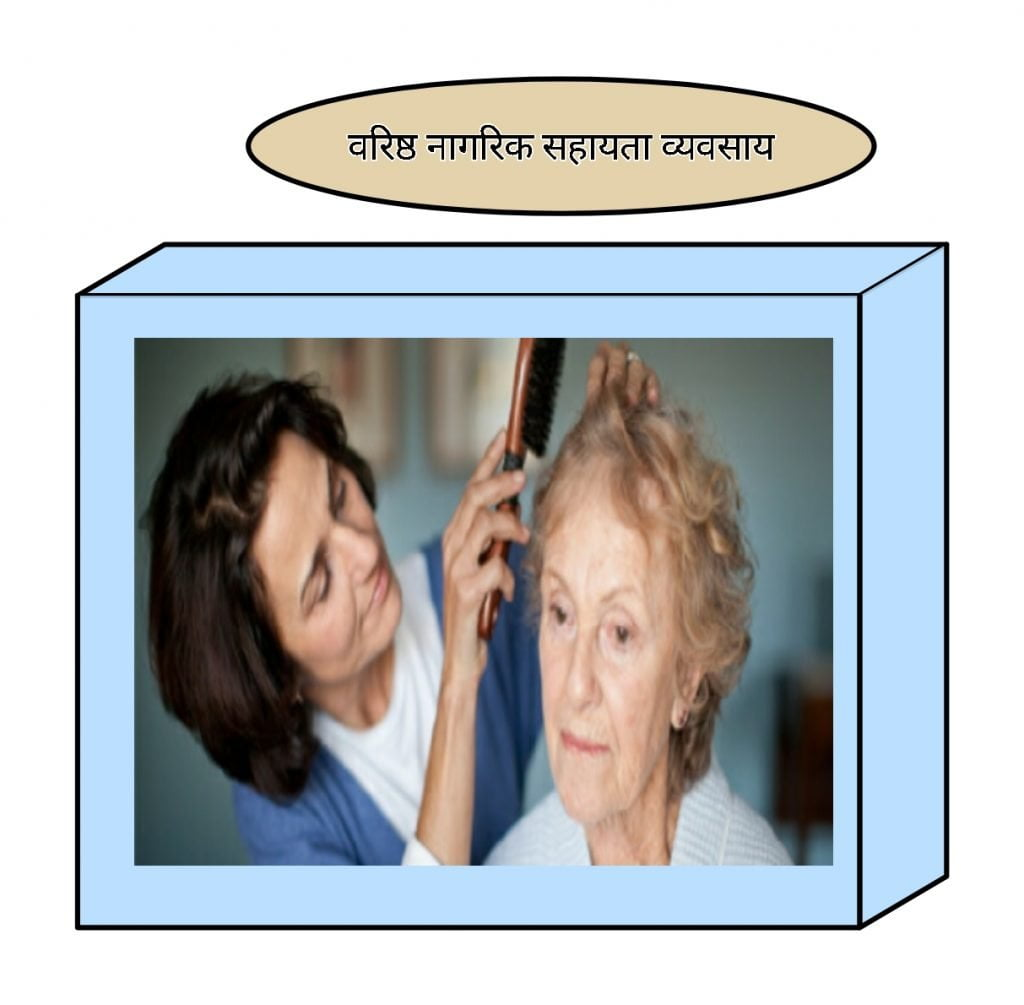 Senior Citizen Support Business Business ideas In hindi