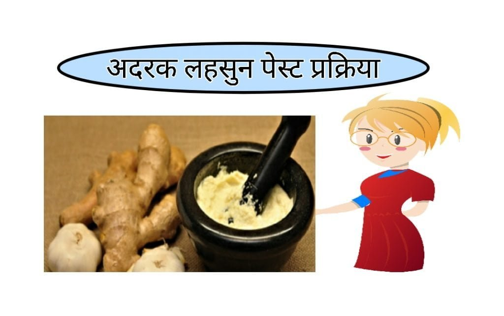 Ginger garlic paste process food business ideas in hindi
