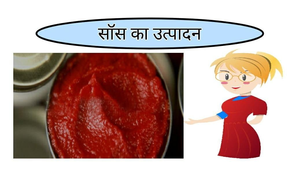 Production of sauce food business ideas in hindi