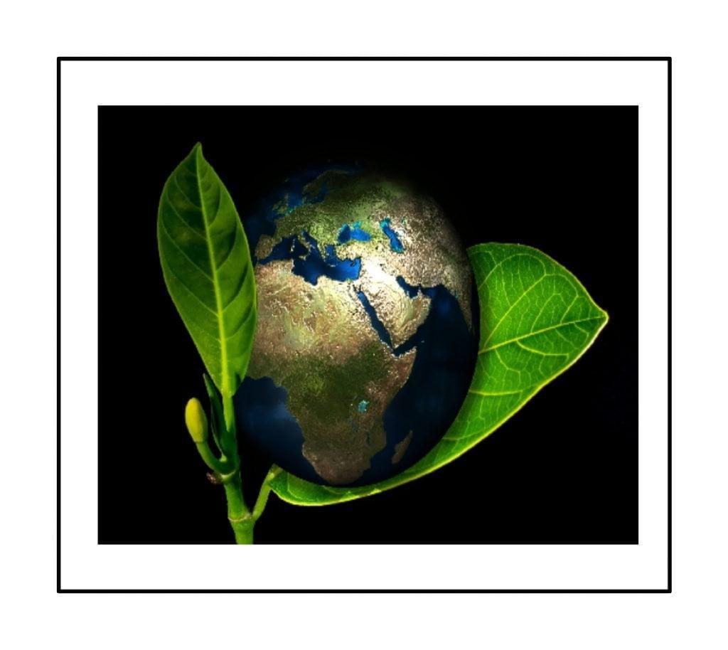 Eco Business ideas in hindi | ईको बिज़नेस आइडियाज